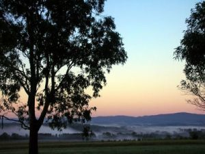 Bluebush Estate - Inverell Accommodation