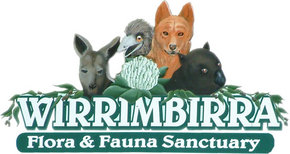 Wirrimbirra Sanctuary - Inverell Accommodation