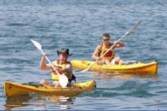 Manly Kayaks - Inverell Accommodation