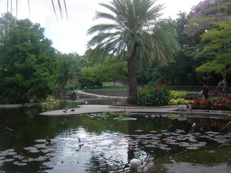 Brisbane City Botanic Gardens - Inverell Accommodation