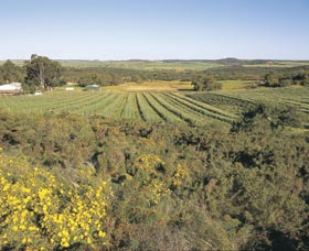Chapman Valley Scenic Drive - Inverell Accommodation