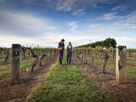 Coonawarra Wineries Walking Trail - Inverell Accommodation
