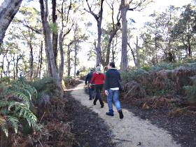 Bridport Walking Track - Inverell Accommodation