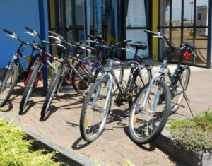 George Town to Low Head Walking and Cycling Trail - Inverell Accommodation