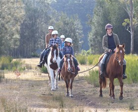 Horse Riding at Oaks Ranch and Country Club - Inverell Accommodation