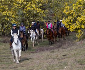 Burnelee Excursions on Horseback - Inverell Accommodation