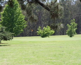 Inverell Golf Club - Inverell Accommodation