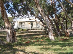 Wenton Farm Holiday Cottages - Inverell Accommodation