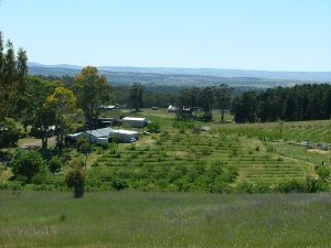 Taralee Orchards - Inverell Accommodation