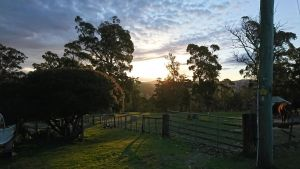 Glengarry farm stay BnB - Inverell Accommodation